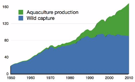 Graphic showing growth of aquaculture