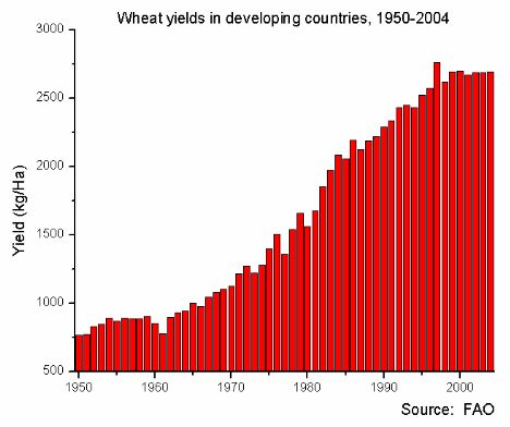 Wheat yields in developing countries