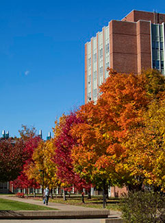Picture of Binghamton University