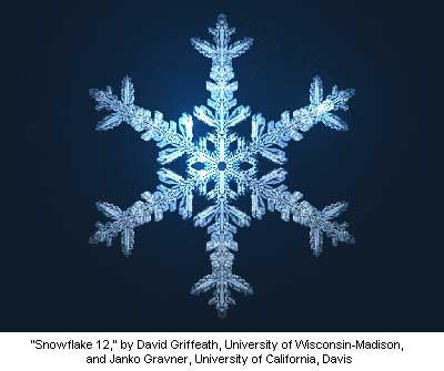 snowflake 12