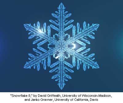 snowflake 8