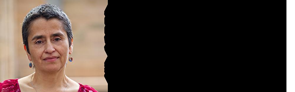 Vilma Mesa slide