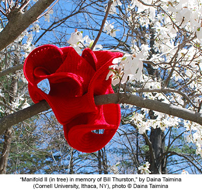 Manifold in tree