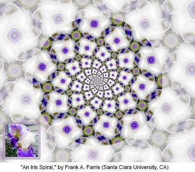 An Iris Spiral