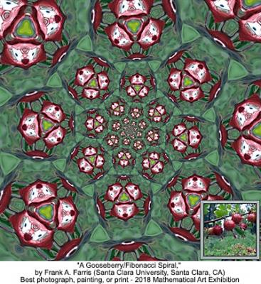A Gooseberry/Fibonacci Spiral