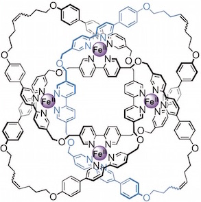 molecular knot