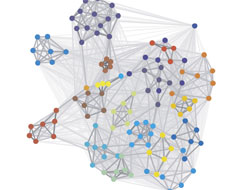 Graph of committee connections